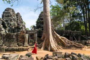 Angkor Signature Tour In A Day Packages